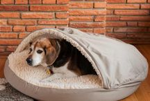 Cozy Cave Customers / Whether you're riding around town, or around the country, let your dog enjoy the ride, sitting up smart in safety and comfort. Your best friend will enjoy the view in any one of a variety of Lookout or dog car seats from Snoozer. Lookout and Dog Car seats come with straps to secure your dog and comfortable cushions and pads to help take the bumps out of any ride.  Shop the Collection - http://snoozerpetproducts.com/dog-beds-carriers/home-pet-living-c-27/cozy-cave-dog-beds-snoozer/