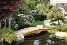 Decoración jardines.