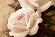Flowers / Virág