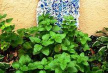 Herbs & Their Uses