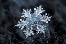 Snowflakes / by Fulisa Shepherd