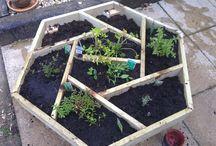 Jardinage Ecolo / Astuces jardinage