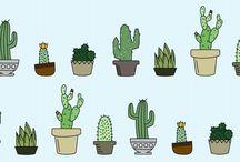 cactos!! plantas...