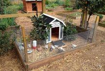 self sufficient farming ideas
