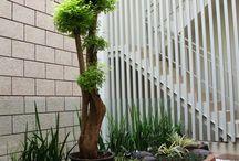 Smal garden