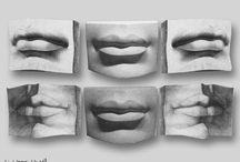 Anatomy (Facial)