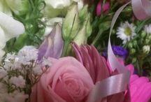 Flowers / General flowers