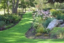 Landscaping Ideas / by Ann Beebout Williams