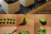 minicake succulent
