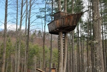 Tree Houses / by Historic Shed