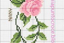 Schema rose