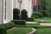 Klasszikus kert