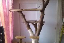 Arbre a chat / Arbre fait maison a partir d un tronc trouvé dans le lit d une riviere