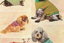 köpeğimin kıyafetleri