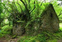amazing abandoned