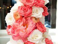 Wedding / Wedding plan