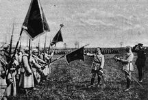 Polish Blue Army / Polish military contingent created in France during the latter stages of World War I. The name came from the blue military uniforms worn by the soldiers