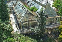 Conservatories and gardens