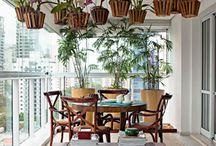 plantas lindas