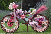 Bicis y Flores