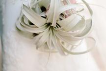 Arreglos florales pr novias