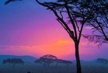 Pembe Club | Beautiful Nature