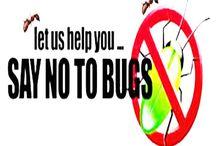 Pest Control Assistance