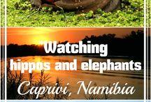 AFRICA worldering around