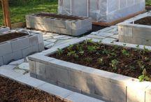 Tia's garden ideas