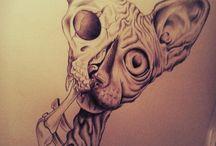 sphynx drawing