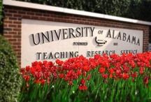 The University of Alabama  / by Visit Tuscaloosa