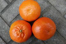 Mandarinková zátiší: Václav Kovalčík, Zlín
