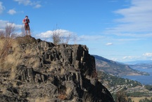 Nature / Flora, fauna and natural settings in and around West Kelowna and the Westside of Okanagan Lake.