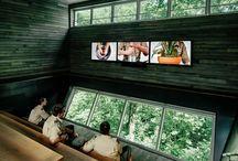 Treehouses / Wood houses