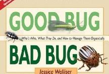 Good bugs bad bugs