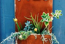 Front Porch / by Lindzi Armstrong