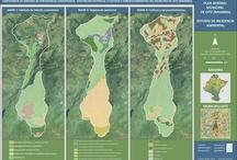 Mapas de Ecoter