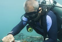 Restoring coral reefs through art initiative breathes new life into Senggigi Beach