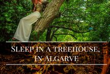 Treehouses Around The World / Nothing more the add.