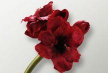 Foyer Artificial Amaryllis Single Red Flower