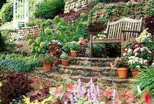 teraszos kert