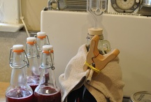 Preservation and Fermentation / by E. Gad