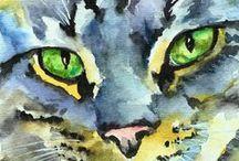 Μάτια γάτας