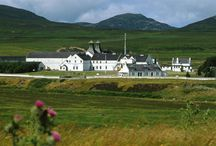 Dalwhinnie Whisky / Whisky Please sells the finest single malt whiskies online at very low prices.