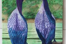 Birds - Cormorants, shags, darters