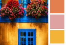 #ColourStory #CasaPOP