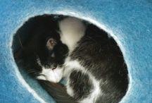 Pet Stuff/ Pet Gifts / pet, pet gifts, cute, pets, animals, animal gifts, pets gifts,