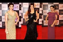13th Indian Telly Awards-Red Carpet