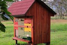 Let's go APIARY over bees and save the world!