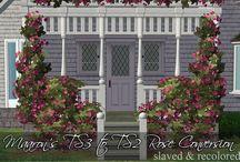 Build - Garden Center